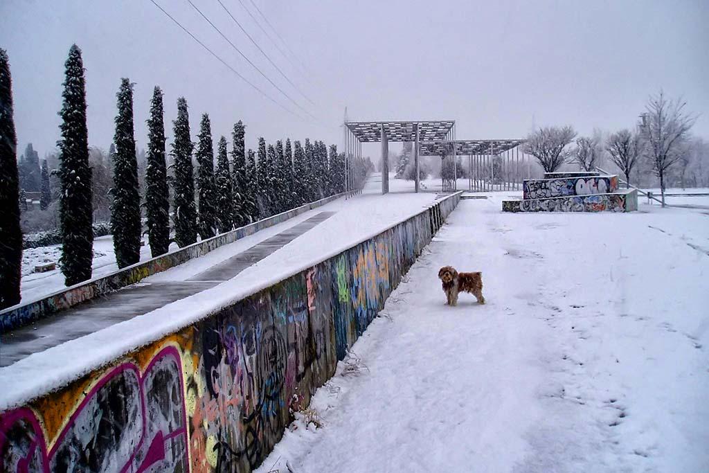 Погода зимой в Мадриде